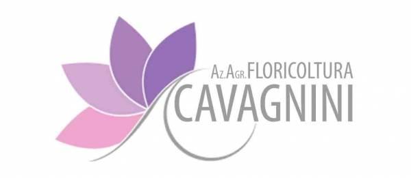 Floricoltura Az. Agr. Cavagnini Roberto