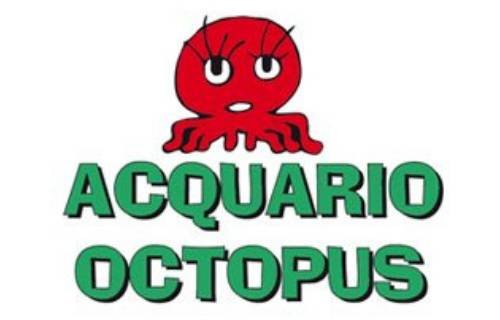 Acquario Octopus Quart