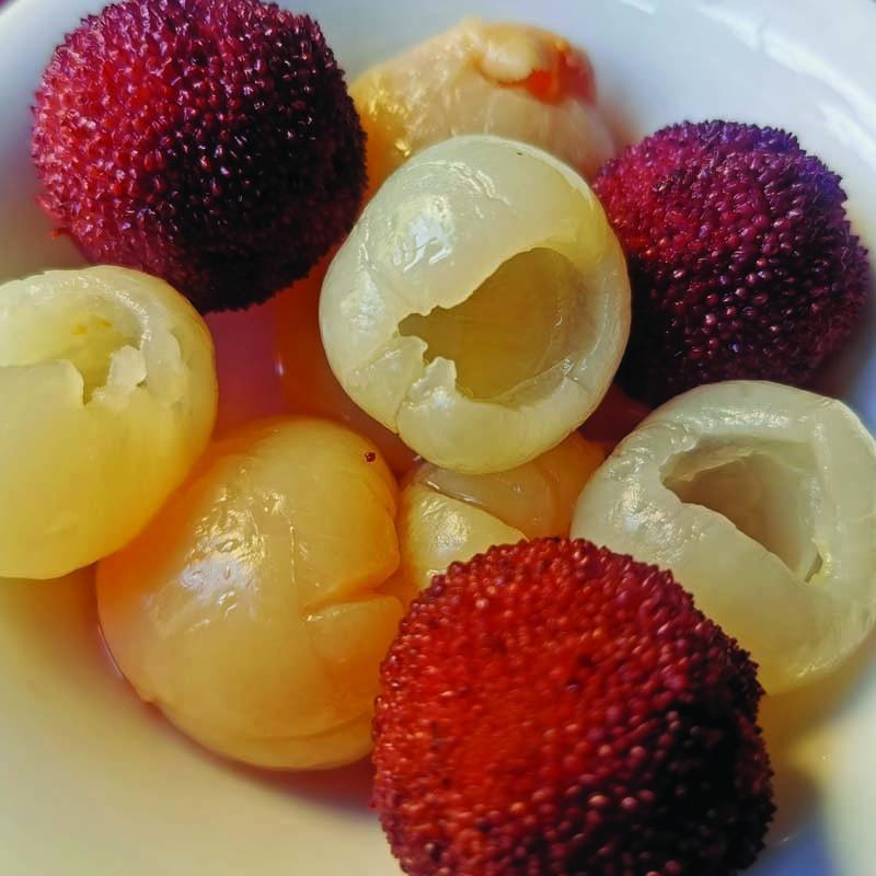 D3 frutta sciroppata mista  水果