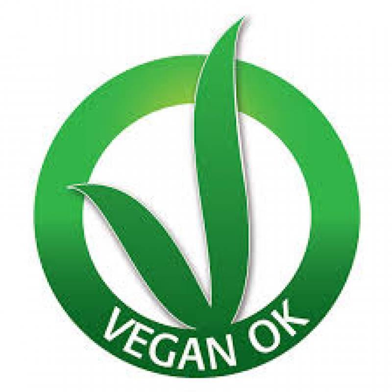 Menù 100% Vegan
