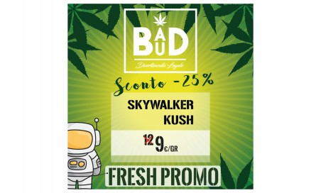 Skywalker indoor - infiorescenza di canapa 100% legalel